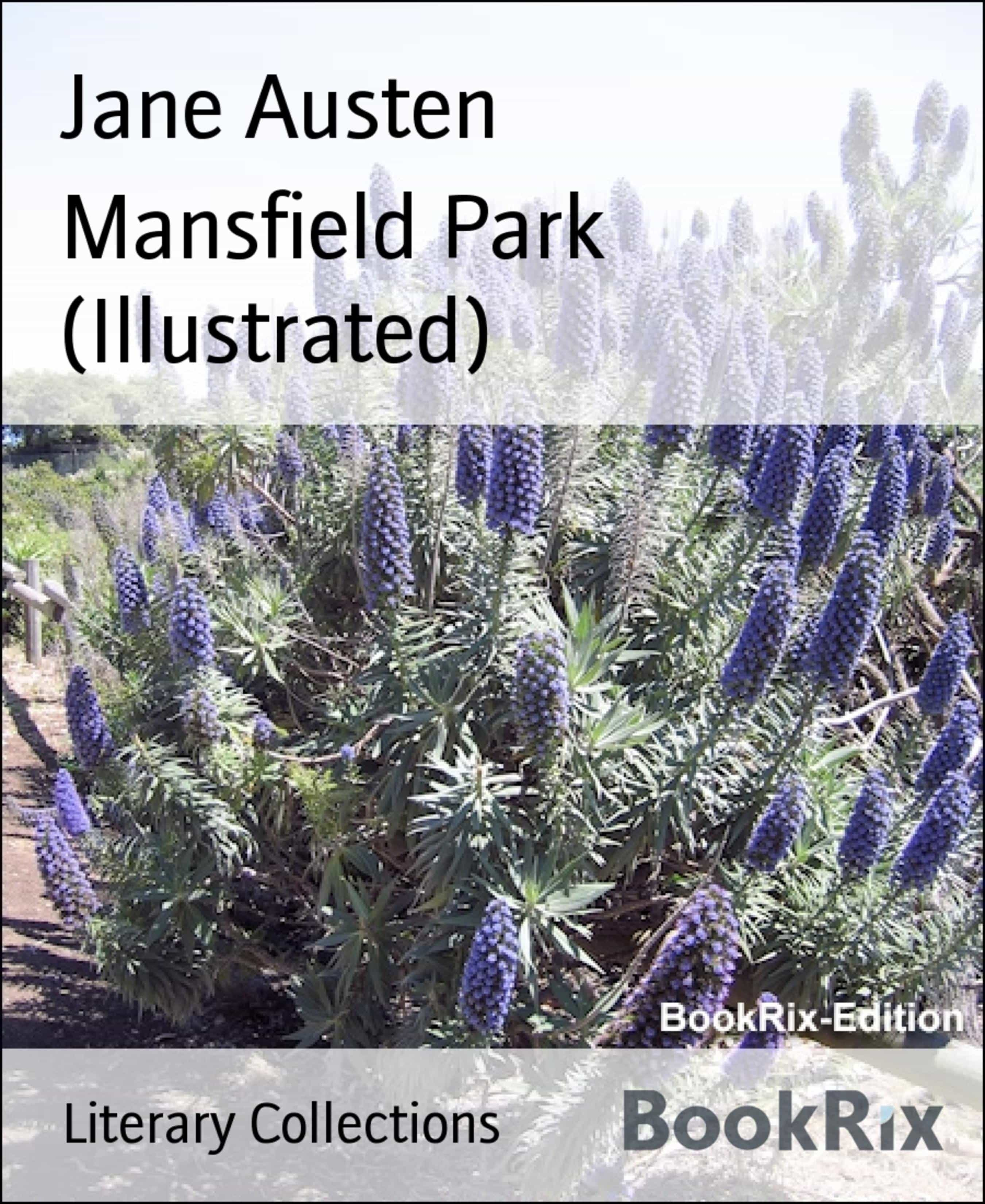 MANSFIELD PARK (ILLUSTRATED)
