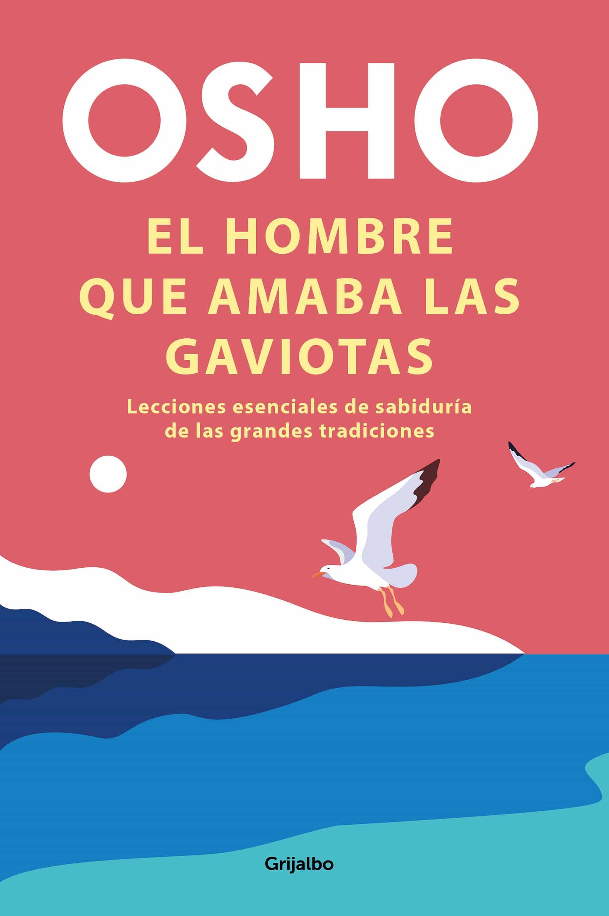 El hombre que amaba las gaviotas (ebook)