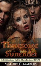 Threesome Surrender (ebook)