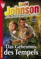 David Johnson 3 - Abenteuerroman (ebook)