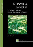 La homilía dominical. Ciclo C (ebook)