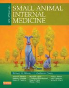 Small Animal Internal Medicine - E-Book (ebook)