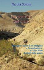 La cicatrice del cielo: storie di un pellegrino a Gerusalemme e in Terra Santa al tempo della guerra (con foto) (ebook)
