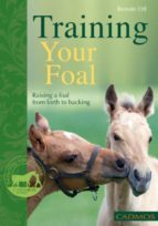 Training Your Foal (ebook)