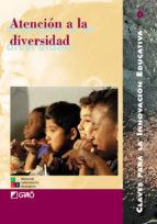 Atención a la diversidad (ebook)