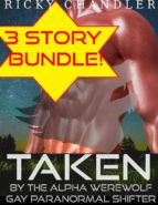 Taken By The Alpha Werewolf   Bundle Gay Paranormal Shifter  (ebook)