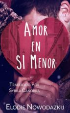 Amor En Si Menor (ebook)
