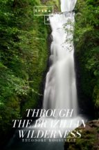 Through the Brazilian Wilderness (ebook)