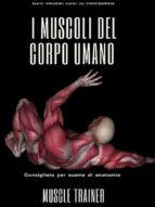 I Muscoli del Corpo Umano (ebook)