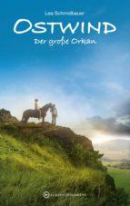Ostwind - Der große Orkan (ebook)