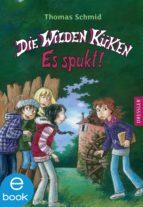 Die Wilden Küken - Es spukt! (ebook)