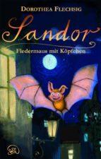 Sandor Fledermaus mit Köpfchen (ebook)