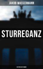 Sturreganz: Historischer Roman (ebook)