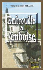 Embrouille à Amboise (ebook)