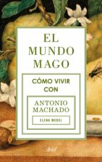 El mundo mago (ebook)