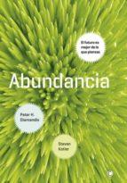 Abundancia (ebook)