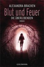 Blut und Feuer (ebook)