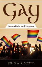 Gay: Homo Zijn In De 21E Eeuw (ebook)