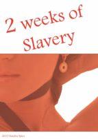 2 weeks of slavery (ebook)