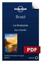 Brasil 6_15. Amazonia (ebook)