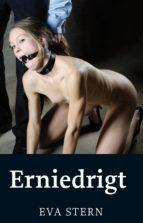 Erniedrigt (ebook)