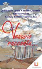 Il Vesuvio racconta... (ebook)