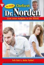 Chefarzt Dr. Norden 1118 – Arztroman (ebook)