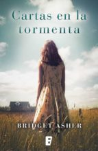 Cartas en la tormenta (ebook)