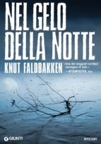 Nel gelo della notte (ebook)