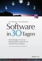 Software in 30 Tagen (ebook)