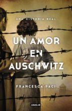 Un amor en Auschwitz (ebook)