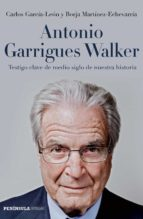 Antonio Garrigues Walker (ebook)