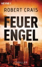 Feuerengel (ebook)