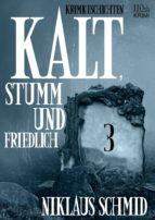 Kalt, stumm und friedlich #3 (ebook)