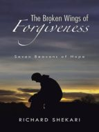 The Broken Wings of Forgiveness (ebook)
