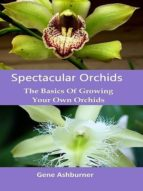 SPECTACULAR ORCHIDS: THE BASICS OF GROWING YOUR OWN ORCHIDS