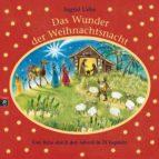 Das Wunder der Weihnachtsnacht (ebook)