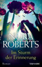 Im Sturm der Erinnerung (ebook)
