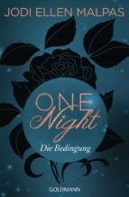 One Night - Die Bedingung (ebook)