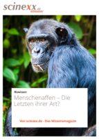Menschenaffen (ebook)