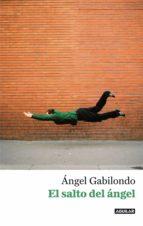 El salto del ángel. Palabras para comprendernos (ebook)