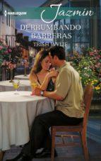 Derrumbando barreras (ebook)