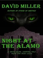 SAITO IZUMI, NIGHT AT THE ALAMO