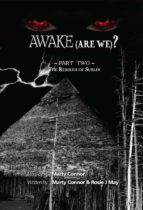 Awake (Are We?) Part 2 (ebook)