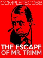 The Escape of Mr. Trimm (ebook)
