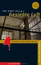Gesiebte Luft (ebook)