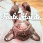 Faule Hunde (ebook)