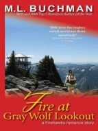 Fire at Gray Wolf Lookout (ebook)