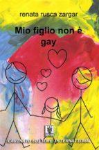 Mio figlio non è gay (ebook)