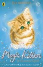 Magic Kitten: A Summer Spell (ebook)